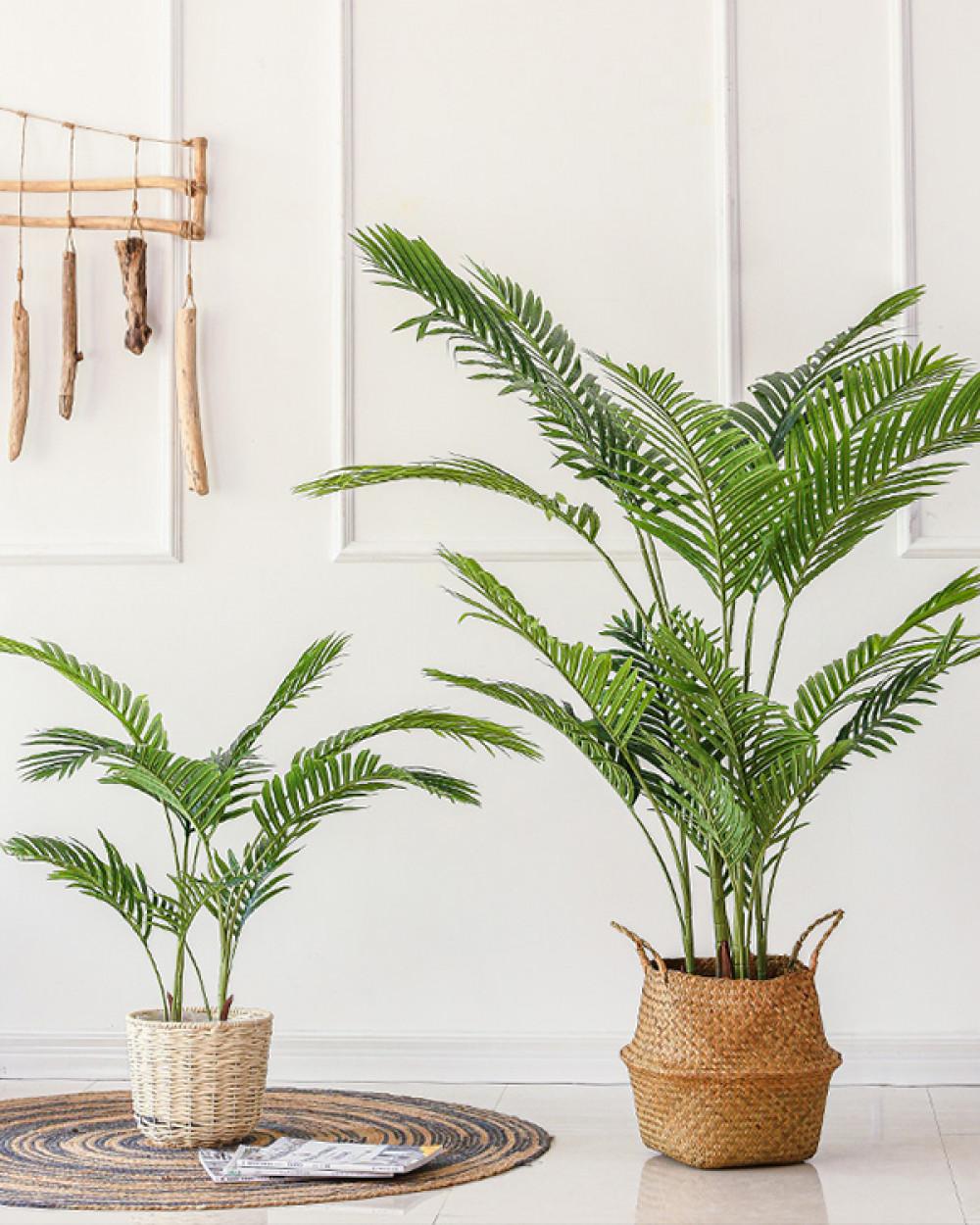 BOTANICA Palm | Planter